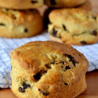 The perfect fruit scones. Well risen, rich and full of sultanas. Smother with some butter and top with jam.